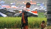 ACT Dampingi Jutaan Pengungsi Rohingya, 'Palestina di Asia Tenggara'