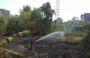 Alang-alang di SMAN 1 Sidayu Terbakar, Nyaris Merembet ke Sekolah
