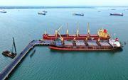 Kunjungan Kapal Turun, Bongkar Muat Pelindo Gresik Tak Penuhi Target