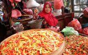 Stok Cabai Diprediksi Surplus hingga Pasca Idul Fitri