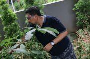 Cak Machfud Jalani New Normal: Tetap di Rumah, Tetap Produktif