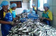 Dinikmati AS-RRT-Jepang, Ekspor Ikan-Udang Jatim Meningkat