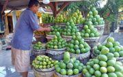 Dinas Pertanian Cari Upaya Strategis Dorong Ekspor Mangga Jatim