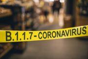 Langkah Pemerintah Mencegah Penyebaran Mutasi Virus Corona