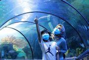 Ini 8 Tempat Wisata di Jakarta yang Sudah Buka