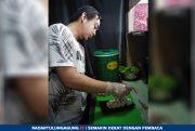 Cara Gampang dan Cepat Membuat Sushi Kombinasi Salmon Dengan Keju