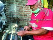 Produksi Turun 75 Persen, Nyambi Jualan Telur Asin