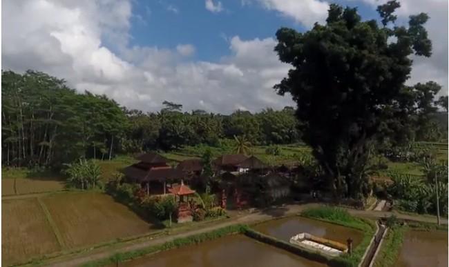 Dispar Badung Fokus Kembangkan 11 Desa Wisata Targetnya