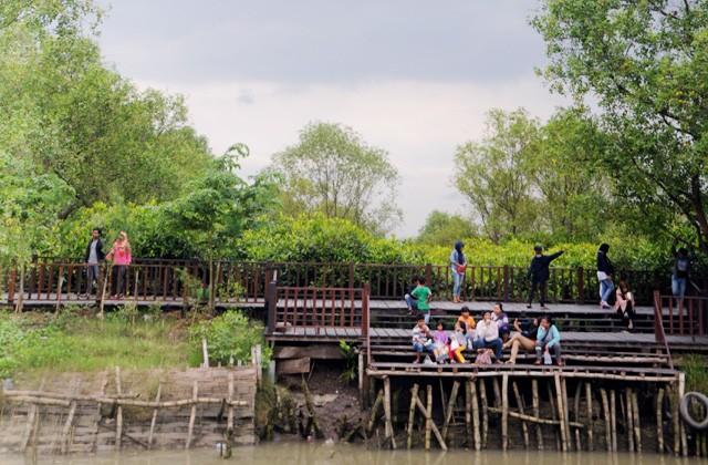 Eko Wisata Hutan Mangrove Edukasi Anak Sambil Berwisata