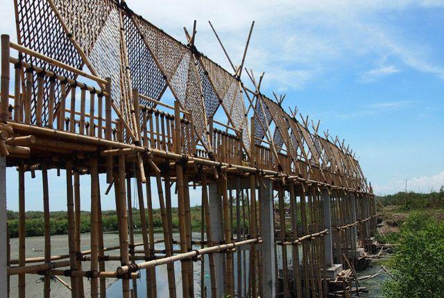Evaluasi Ulang Konstruksi Jembatan Bambu Di Wisata Mangrove